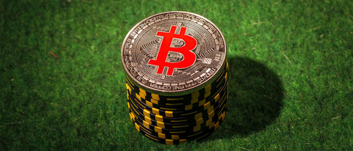 Die 5 Besten Bitcoin Online Casinos - Bitcoin News Schweiz